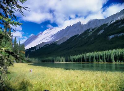 AB-Jasper National Park