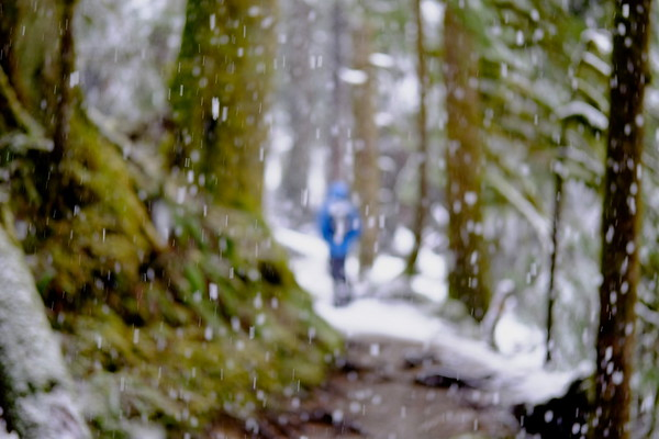 April 2021 - Lake 22 - Snowy Spring