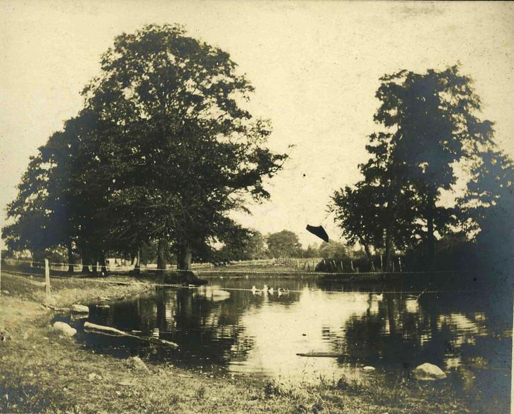 Miller Pond028.jpg