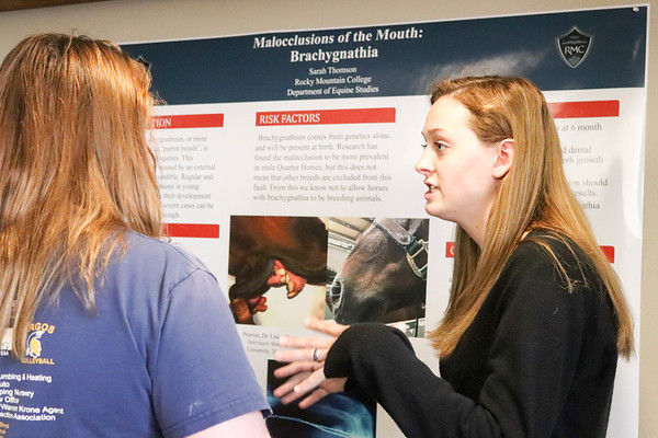 Undergraduate Research Symposium 2018