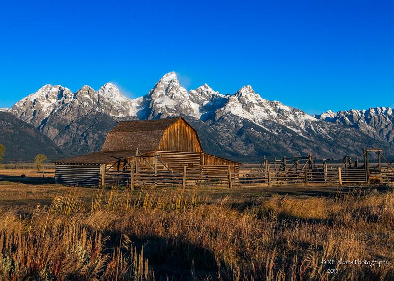 Mormon Barn 0516.jpg