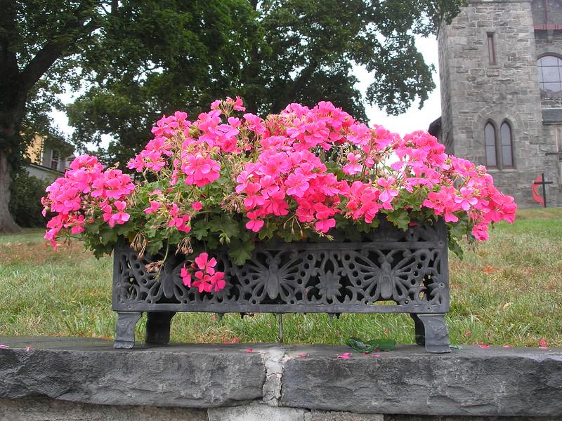 Flower box across street from USMA Visitor Center