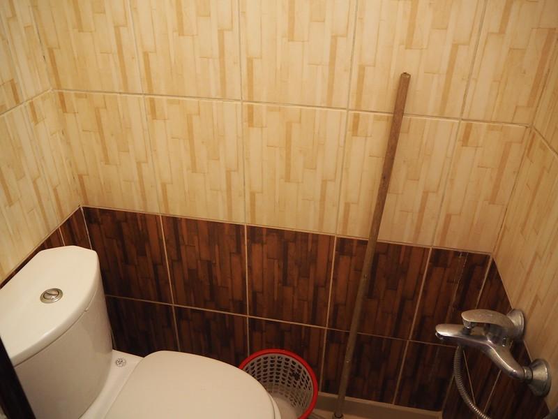 P8080055-apartment-bathroom.JPG
