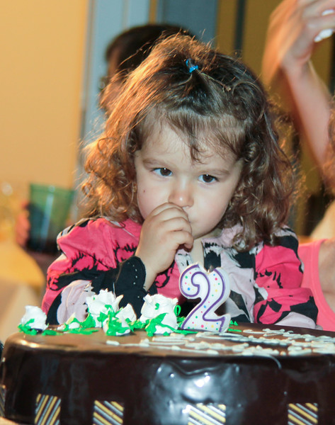 Sophie's 2 Year Celebration - April 21,  2012