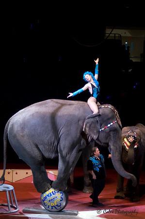 2008 Shrine Circus