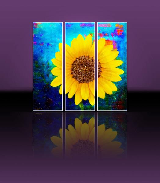 sunflower2itsalivedramaframed.jpg