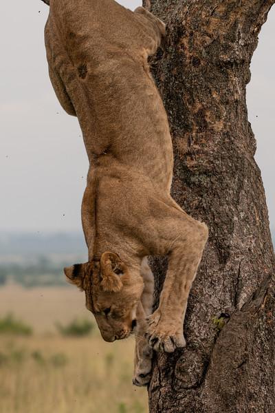 Uganda_T_QE-1274.jpg