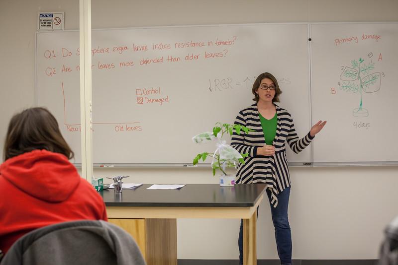 Alyssa Hakes Classroom-20.jpg