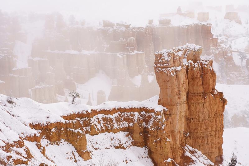 200319 - Bryce Canyon - 00360.jpg