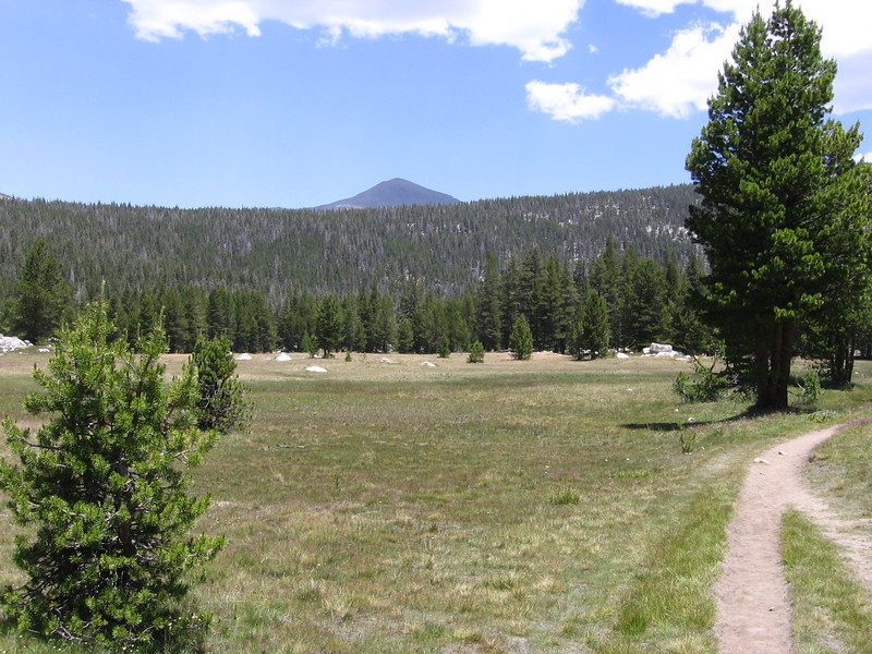 Starting up miles-long meadow along Lyell Canyon. Trail is now the route of both the JMT and the Pacific Crest Trail (PCT.)