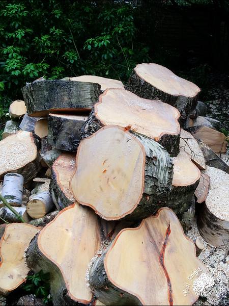 Paul Knight Tree Services