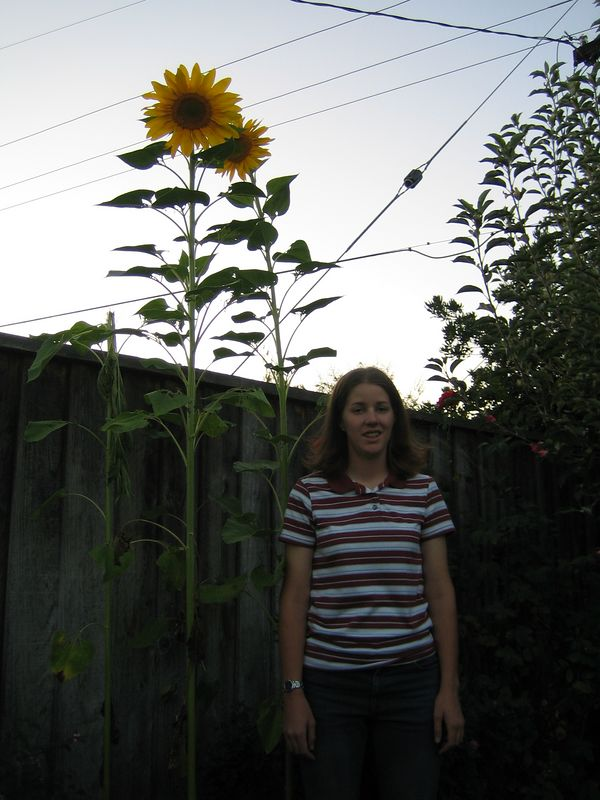 Me w:sunflowers 2.JPG