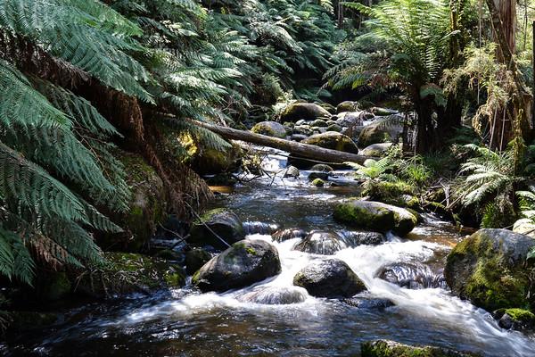 West Gippsland - Victoria