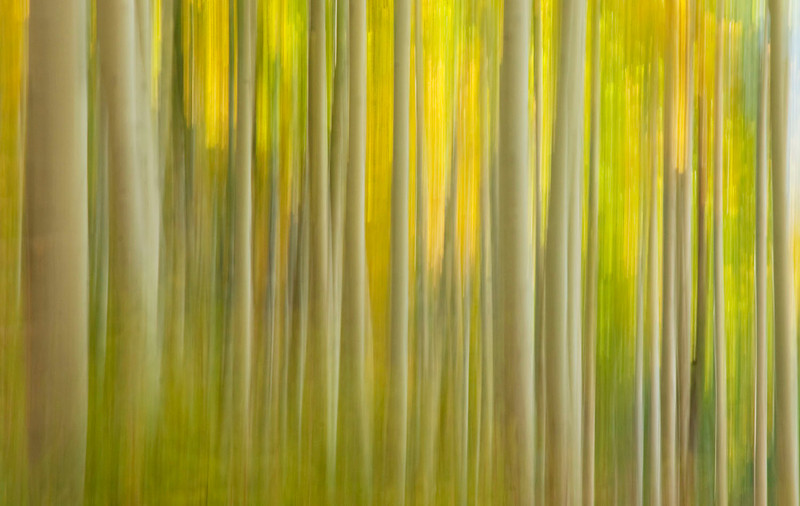 Aspen abstraction, Colorado