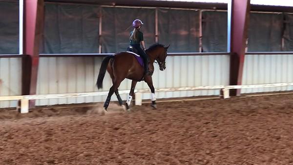 Kadi Training