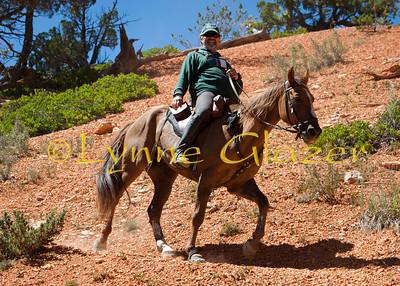 Bryce (Paunsagaunt) XP 2011