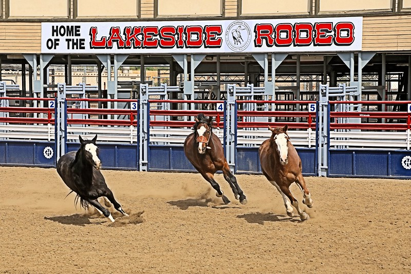 Lakeside Rodeo_3 Broncs_ Susie_2015 _ Across the Sign.jpg