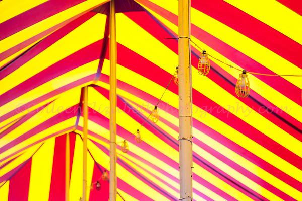 Marshfield Fair 2012
