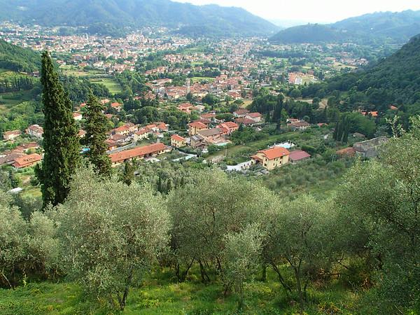 Camaiore Walk