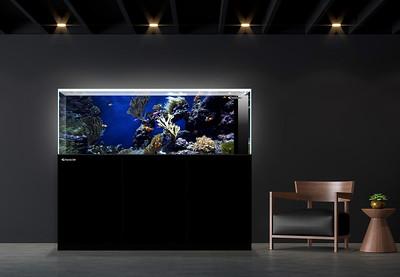 That Aquarium Place