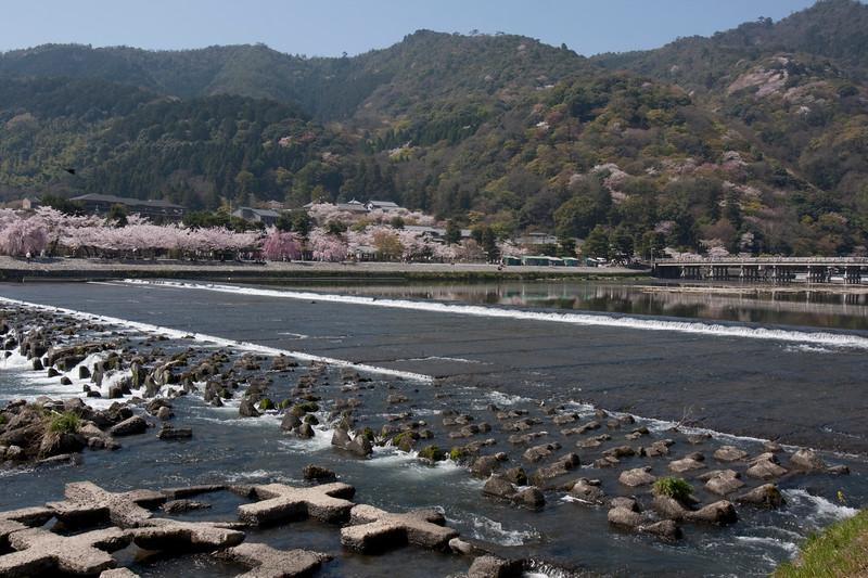 Arashiyama Monkey Park Kyoto