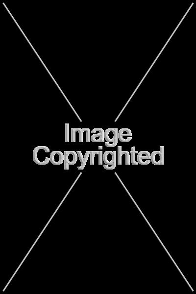 imagecopyright2.png