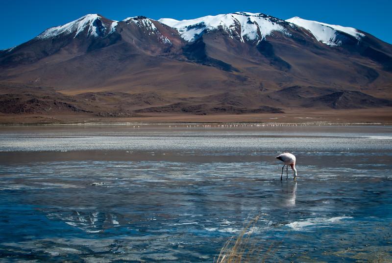Tupiza to Uyuni 20120530 (88).jpg