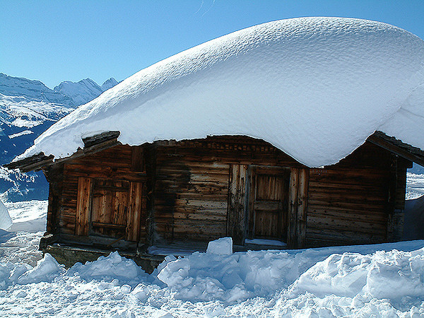 Grindelwald First - Snow-covered barns