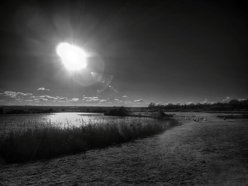Kingfisher Lake in Infrared.jpg