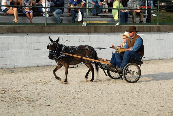 2009 Mini Mule