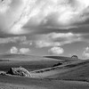 Rural Landscape II _ bw