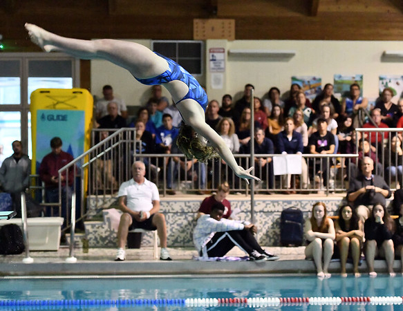 10/29/2019 Mike Orazzi | StaffrBristol Easterns Alexsia Newmanduring diving at Tuesdays girls swim meet with Bristol Central.