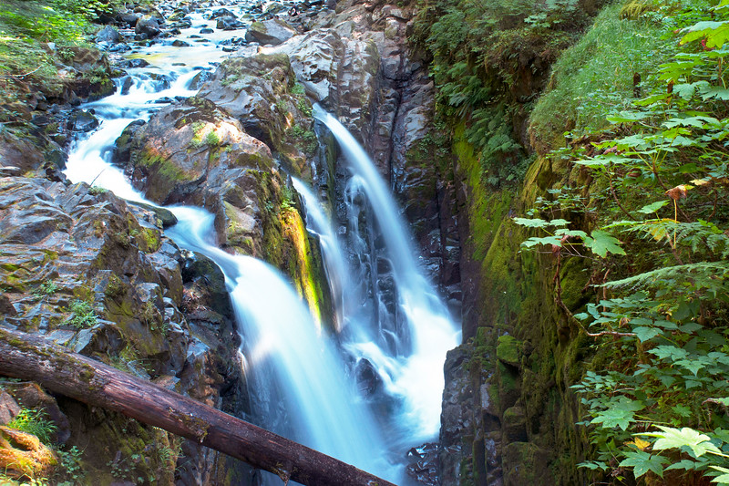 Sol Duc Falls Olympic Rain Forest