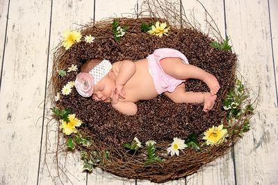 Danika - Newborn