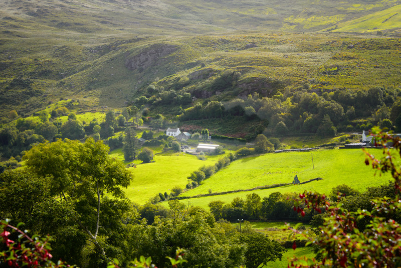 Valley Farm in County Kerry, Ireland