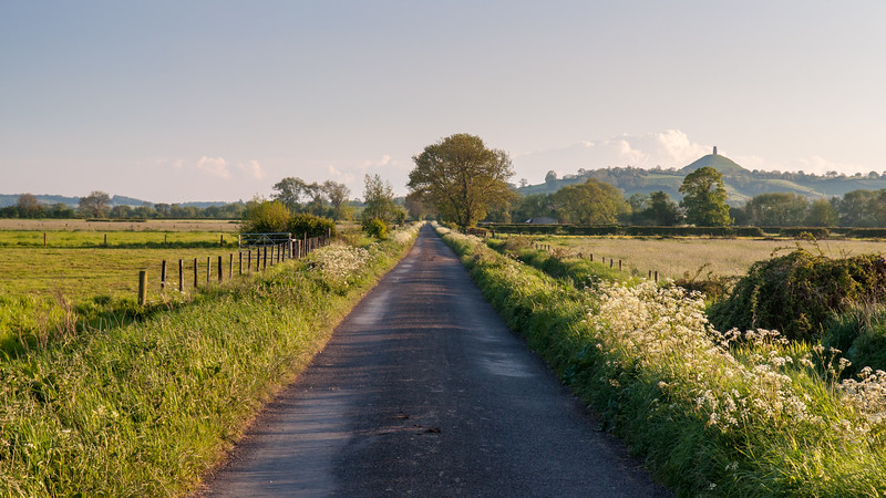 Country lane on the Somerset Levels