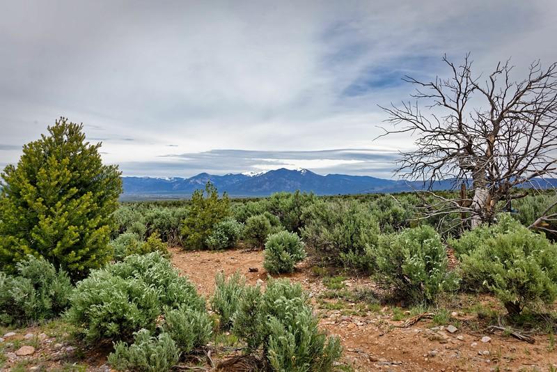 Taos-131.JPG