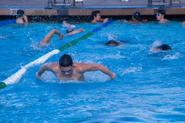 Hart Swim 2012