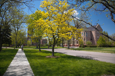 A Sunny Day on the University of Denver Campus