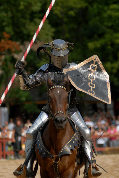 victorious knight.jpg