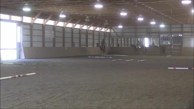 TSRC 2019-03-27 Milestone Sport Horses Video