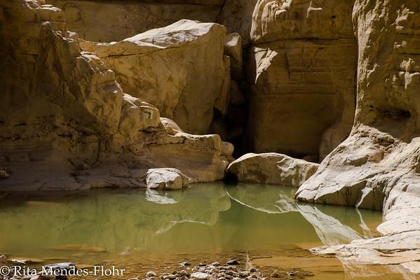 DESERT HIKES - the Judean Desert