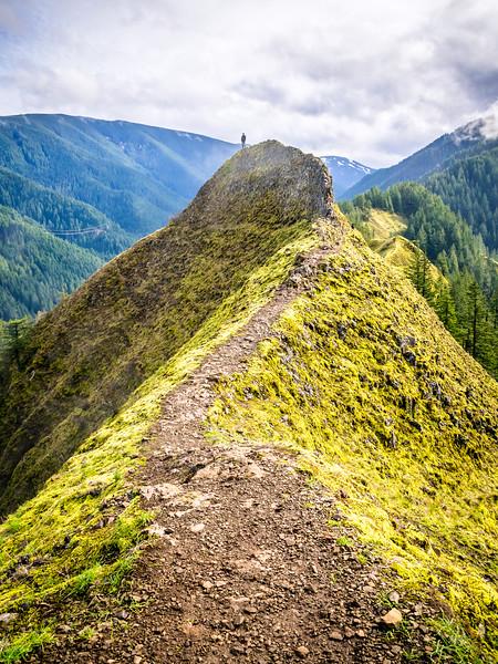 Oregon Munra Point Ridge.jpg