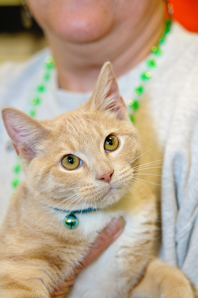 20110312 PetSmart Adoption Event-3.jpg