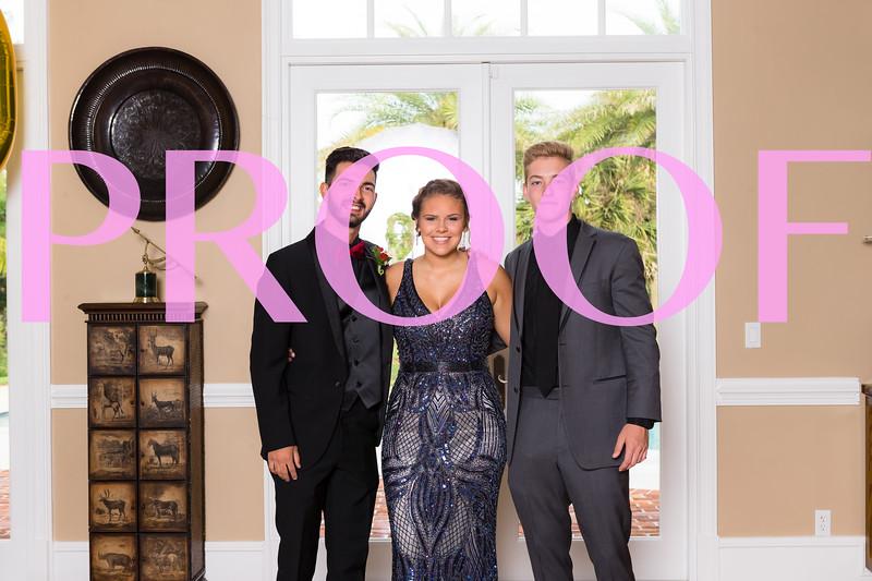Prom 2019-102.jpg