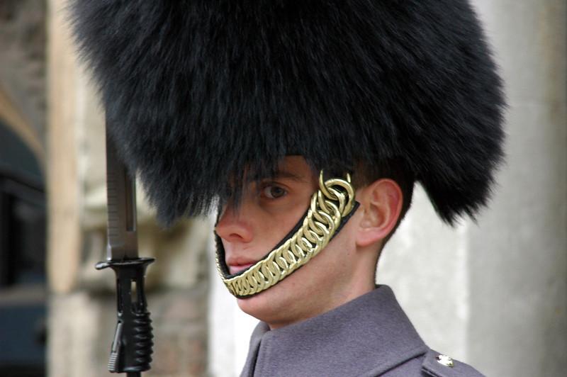 Palace Guard Boy
