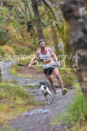 Betws y Coed Trail Challenge - Canicross at 4.5kM