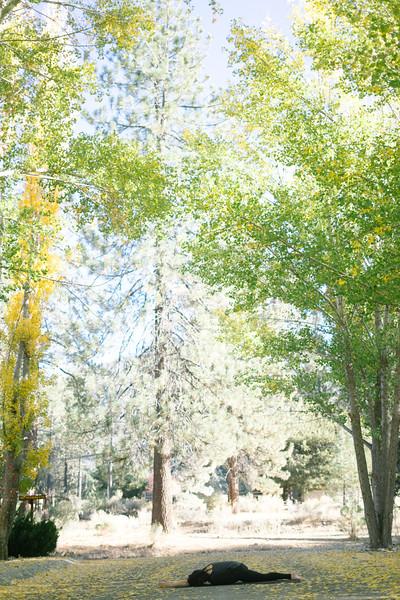 Toni Kuhn Yoga Photography Pine Mountain Club-43.jpg
