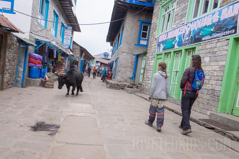 Nepal 181(20150416-DSCF2360)