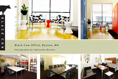 Black Cow Office